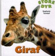 store dyr - giraf - bog