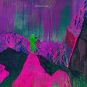 dinosaur jr. - give a glimpse of what yer not - cd