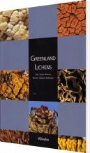 greenland lichens - bog
