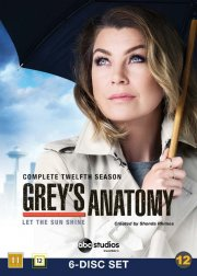 greys hvide verden - sæson 12 / grey's anatomy - season 12 - DVD