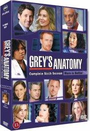 greys hvide verden - sæson 6 / grey's anatomy - season 6 - DVD