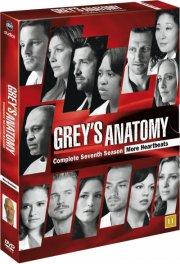 greys hvide verden - sæson 7 - DVD