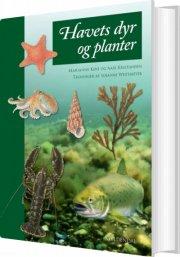 havets dyr og planter - bog