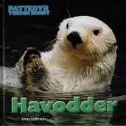 pattedyr verden rundt - havodder - bog