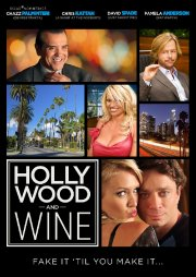 hollywood and wine - DVD