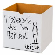teitur - i want to be kind - Vinyl / LP