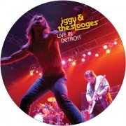 iggy & the stooges - live in detroit - 11