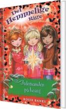 det hemmelige rige - julemanden på besøg - bog