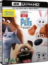 kæledyrenes hemmelige liv / the secret life of pets - 4k Ultra HD Blu-Ray