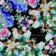 fribytterdrømme - labyrintens farver - Vinyl / LP