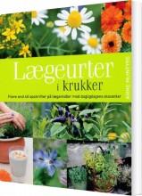 Lægeurter I Krukker - Anne Mcintyre - Bog