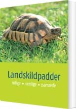 landskildpadder - bog