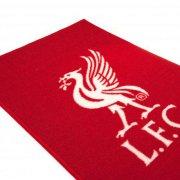 liverpool merchandise - tæppe - Merchandise