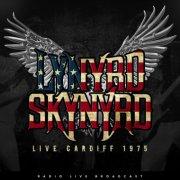 lynyrd skynyrd - live cardiff - 1975 - Vinyl / LP