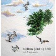 mellem fjord og hede - bog