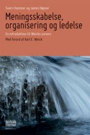 meningsskabelse, organisering og ledelse - bog