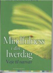 mindfulness i din hverdag - bog
