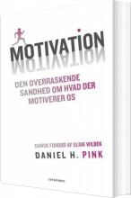 motivation - den overraskende sandhed om hvad der motiverer os - bog