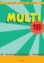 multi 1b - bog