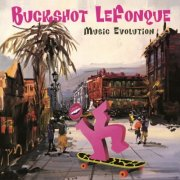 buckshot lefonque - music evolution - Vinyl / LP