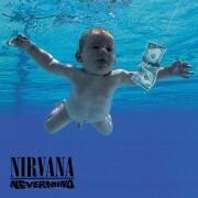 nirvana - nevermind - Vinyl / LP