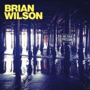 brian wilson - no pier pressure - Vinyl / LP