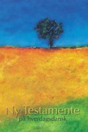 ny testamente - på hverdagsdansk - bog