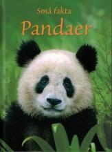 små fakta - pandaer - bog