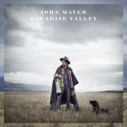 john mayer - paradise valley - Vinyl / LP