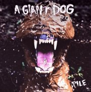 a giant dog - pile - Vinyl / LP