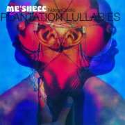 me'shell ndegeocello - plantation lullabies - Vinyl / LP