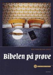 religionstemaer, bibelen på prøve - bog