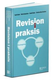 revision i praksis - planlægning, udførelse, konklusion - bog
