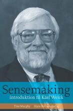 sensemaking - bog