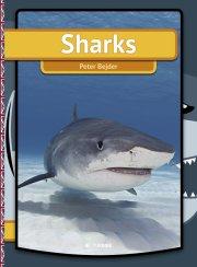 sharks - bog