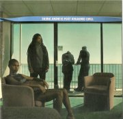 skunk anansie - post orgasmic chill - cd