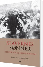 slavernes sønner - bog