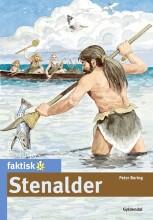 stenalder - bog