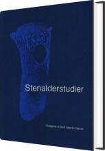 stenalderstudier - bog