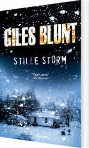 stille storm - bog
