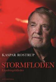 stormfloden - bog