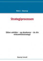 strategiprocessen - bog