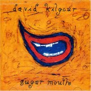 david kilgour - sugar mouth - Vinyl / LP