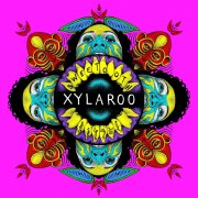 xylaroo - sweetooth - Vinyl / LP