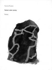 tanker uden sprog - bog