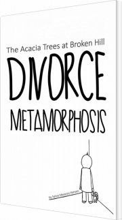 divorce metamorphosis - bog