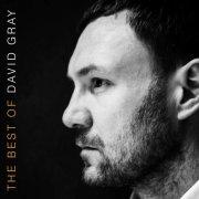 david gray - the best of david gray - Vinyl / LP