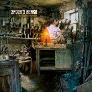 spock's beard - the oblivion particle - Vinyl / LP