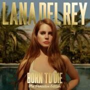 lana del rey - born to die - the paradise edition - Vinyl / LP
