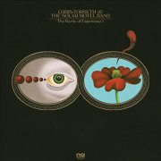 chris forsyth & the solar motel band - the rarity of experience - Vinyl / LP